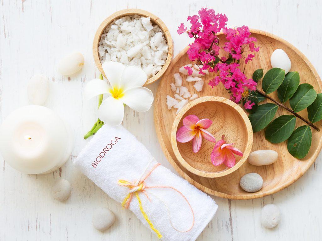 wellness concept biodroga